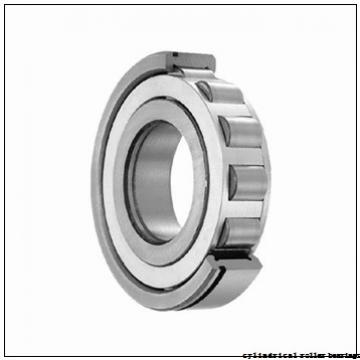 75 mm x 160 mm x 55 mm  NSK NU2315 ET cylindrical roller bearings